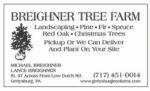 Breighner Tree Farm